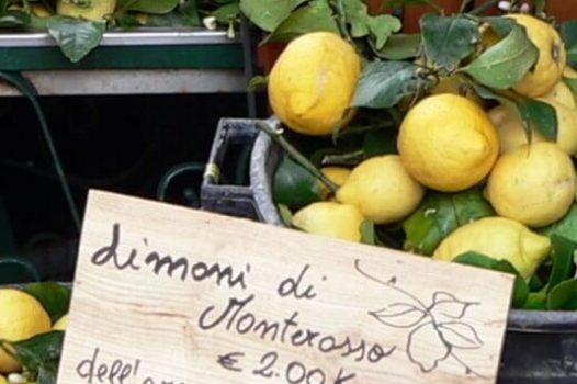 Let's Paint The Town Yellow- Lemon Festival Monterosso